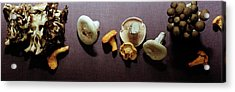 An Assortment Of Mushrooms Acrylic Print by Romulo Yanes
