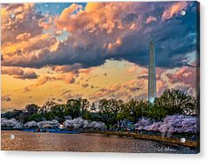 An Evening In Dc Acrylic Print by Christopher Holmes