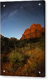 An Image Of Seasonal Confusion In Arizona Acrylic Print by Mike Berenson