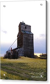 An Old Grain Elevator Off Highway Two In Montana Acrylic Print by Jeff Swan