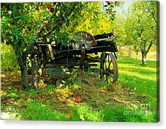 An Old Harvest Wagon Acrylic Print by Jeff Swan