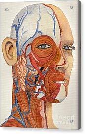 An Organ Donor Acrylic Print