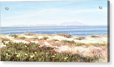 Anacapa Island In The Springtime Acrylic Print by Tina Obrien