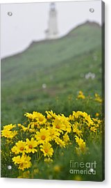 Acrylic Print featuring the photograph Anacapa Spring by Jeff Loh
