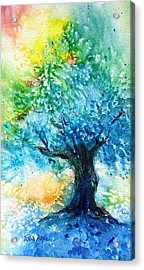 Ancient Olive Tree  Athenas Gift  Acrylic Print by Trudi Doyle