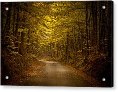Country Road In Mississippi Acrylic Print