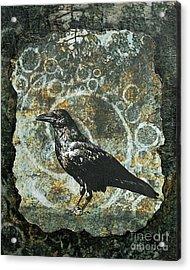 Ancient Spirals Acrylic Print