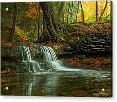 And God Proclaimed His Creation Good Acrylic Print by Skip Tribby