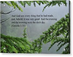 And God Saw Acrylic Print by Tikvah's Hope