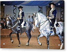 Andalusian Show Horses Acrylic Print