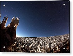 Andean Ice Field At Night Acrylic Print by Babak Tafreshi