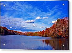Andrew State Park Lake Acrylic Print by Andy Lawless