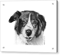 Acrylic Print featuring the photograph Andy - 032 by Abbey Noelle