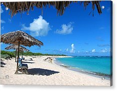 Anegada Acrylic Print by Laura Hiesinger