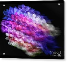 Anemone Abstract Acrylic Print by Claudia Kuhn