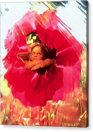 Angel And Poppy Acrylic Print by Katherine Fawssett