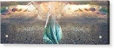 Angel Dream Acrylic Print by Li   van Saathoff
