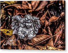 Angel Of Fall Acrylic Print by Ray Congrove