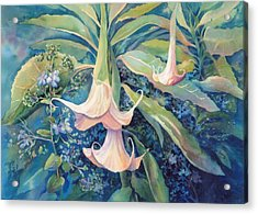 Angels Trumpets II Acrylic Print by Marilyn Young