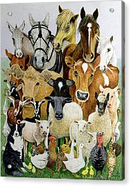 Animal Allsorts Oil On Canvas Acrylic Print