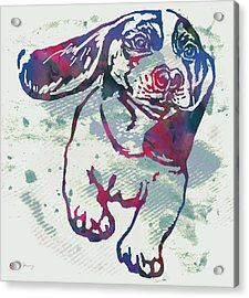 Animal Pop Art Etching Poster - Dog - 6 Acrylic Print by Kim Wang