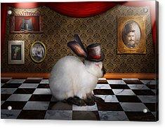 Animal - The Rabbit Acrylic Print by Mike Savad