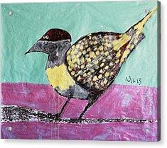 Animalia Avis No.7 Acrylic Print by Mark M  Mellon