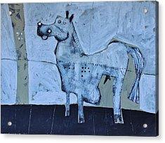 Animalia Equos No.7  Acrylic Print