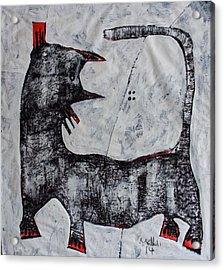 Animalia Feles No. 11 Acrylic Print