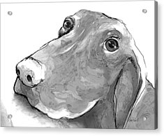 animals - dogs - Feed Me Please Acrylic Print by Ann Powell