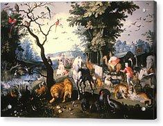 Animals Entering Noah's Ark Acrylic Print by Mountain Dreams