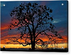 Acrylic Print featuring the photograph Ankeny Hill Sunset by Nick  Boren