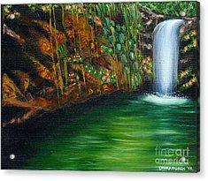 Annadale Waterfall Acrylic Print