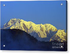 Acrylic Print featuring the photograph Annapurna Dawn by Jacqi Elmslie