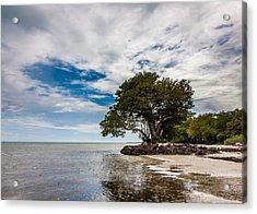 Anne's Beach-3184 Acrylic Print