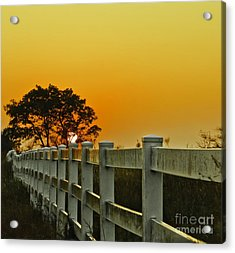 Another Tequila Sunrise Acrylic Print by Robert Frederick