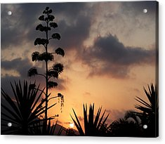 Acrylic Print featuring the photograph Another View by Janina  Suuronen