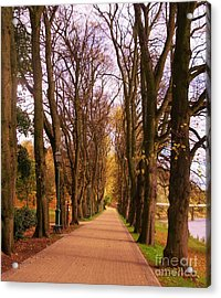 Another View Of The Avenue Of Limes Acrylic Print