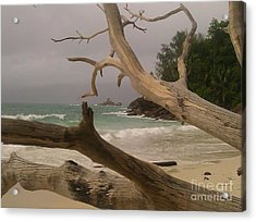Anse Soleil Beach Acrylic Print by Ted Williams