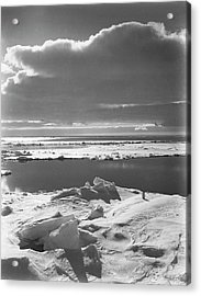Antarctic Pack Ice At Christmas Acrylic Print by Scott Polar Research Institute