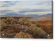 Acrylic Print featuring the photograph Antelope Island - Scenic View by Ely Arsha