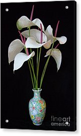 Anthurium Bouquet Acrylic Print by Mary Deal