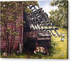 Anticipation - Farm Life Acrylic Print