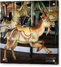 Antique Dentzel Menagerie Carousel Goat Acrylic Print