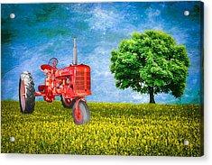 Antique Farmall Tractor Acrylic Print