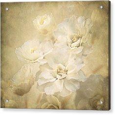 Antique Floral Acrylic Print