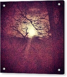 Antique Moon Abstract Acrylic Print