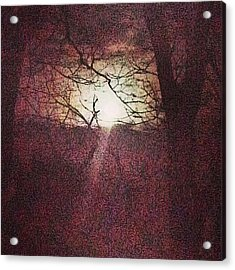 Antique Moon Acrylic Print