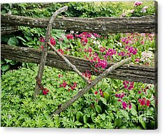 Acrylic Print featuring the photograph Antique Plow Handles by Alan L Graham