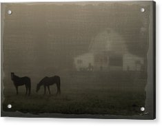 Antique Scene Of Horses In A Fog Acrylic Print by Mick Anderson